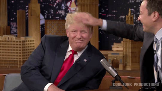 Trump and his funny haircut animated GIF