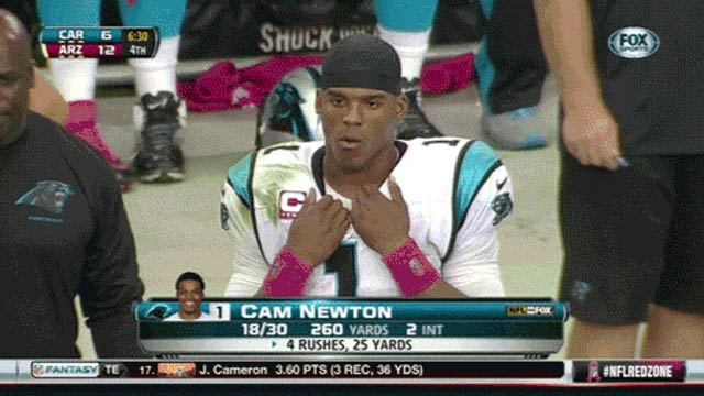 Cam Newton during the game animated GIF