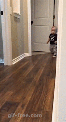 Baby has amazing reaction moving picture