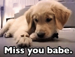 Miss You Babe free GIF download