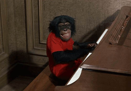 Monkey playing piano animated GIF