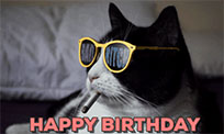 Happy Birthday Cat animated GIF