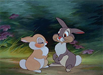 Kissing rabbits animated GIF