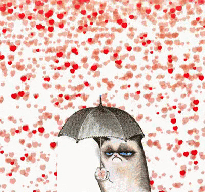 Grumpy Cat moving picture